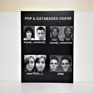 PHP & Databases Usage Poster | codemonzy.com